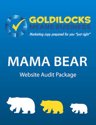 Mama Bear Website Audit Package