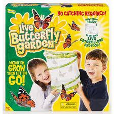 butterfly garden · butterfly garden2