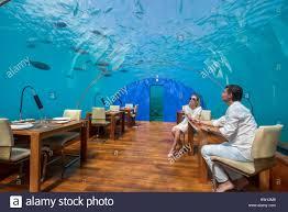 100 Rangali Resort Maldives Island Conrad Hilton Couple In Ithaa