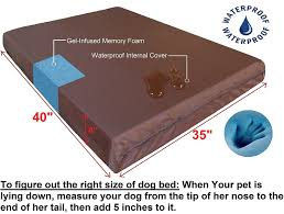 Drs Foster And Smith Dog Beds by Amazon Com Dogbed4less Extra Large Orthopedic Memory Foam Dog