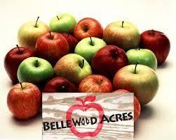 Pumpkin Patch Rv Park Hammond La by Best 25 Ferndale Washington Ideas On Pinterest Bellingham