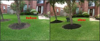Mulching – Sajan Abraham Backyards Chic Backyard Mulch Patio Rehabitual Homes Bliss 114 Fniture Capvating Landscaping Ideas For Front Yard And Aint No Party Like A Free Mind Your Dirt Pictures Simple Design Decors Switching From To Ground Cover All About The House Time Lapse Bring Out Mulch In Backyard Youtube Landscape Using Country Home Wood Chips Angies List Triyaecom Dogs Various Design Inspiration For New Jbeedesigns Outdoor Best Weed Barrier Borders And Under Playset Playground