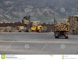 100 Used Logging Trucks Unloading Stock Image Image Of Equipment 21225743