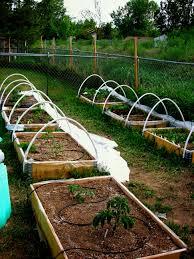 Owner Jesse Eastman S Raised Bed Garden Used Pallet Collars For Frames Promix Bx