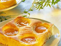 schmandkuchen mit aprikosen