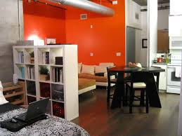 Awesome Picture Of Studio Apartment Design With Small Round Black Wood Dining Table Including White Bookshelf Room Divider And Red Living Wall