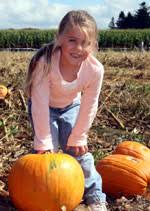Pumpkin Picking In Chester Nj pick your own pumpkins at stony hill chester nj