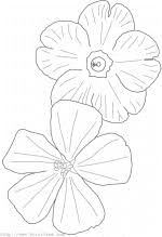 Coloring Page 24 Flowers