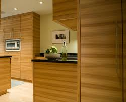 black quartz countertops kitchen modern with flat panel cabinets