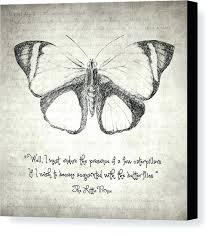 Butterfly Canvas Art Print Featuring The Drawing Quote Little Prince By