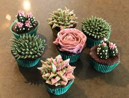 Made Some Succulent Cupcakes It Was My First Time Piping Baking