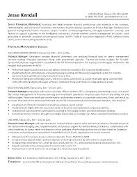 Sample Resume Finance Manager Director Of Finance Resume Examples