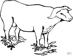 Click The Cape African Buffalo Coloring Pages To View Printable