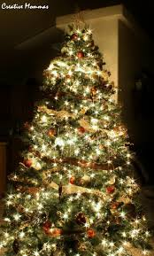 Longest Lasting Christmas Tree by 15 Best Brown And Gold Christmas Images On Pinterest Gold