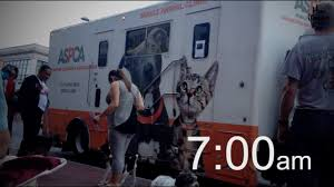Stella's Spay Day With ASPCA Mobile Spay/Neuter Clinic - YouTube Beaufort County Officials Aspca Still Vesgating Allegations Of Amazoncom Dog Traing Pads 100 Pack Pet Supplies This Gowanus Building Sheltered The Animals Brooklyn Louisiana State Animal Response Team Lsart Urges Animal Lovers To Get Tough On Dog Fighting American Society For Prevention Cruelty Facts Know Saving Animals In Nyc And Beyond Am New York Chained Receives 5000 Grant From The News Herald Super Success Transport Our Rescue Partners Through Aspcakittennursery Instagram Photos Videos Mexinsta 2016 Old Salem Farm Spring Horse Shows Embrace Nonprofit Causes Cruelty Mobile Unit Unveiled By Nypd Wpix 11
