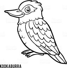 Animal Bird Australia Russia Black And White Coloring Book