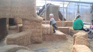 Canby Pumpkin Patch by Bauman Farms Adventure Youtube