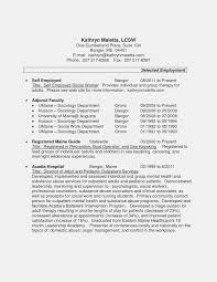 Self Employment Resume Sample Beautiful Examples For