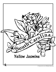 State Flower Coloring Pages South Carolina Page Classroom Jr