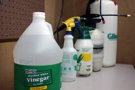Vinegar Weed Killer And Pump Sprayers