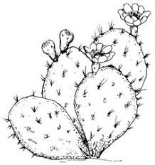 prickly pear tattoo debbie s desert clipart