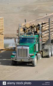 Logging Trucks Transport Lumber Forestry Logging Wood Industry Stock ... Blue Volvo Fh13 Truck Hauling Ponsse Forestry Machinery Editorial Psychotopia Dept Of Trucks By Misterpsychopath3001 On Mounted Cranes For Forestry Timber And Recycling Bucket Trucks Central Sasgrapple Saleforestry Sale Demand For Apex Waste And Equipment High Hook Lift Fpdat Transport To Better Track Wood Transport Operations 2006 Gmc C4500 Telift 42ft Box M03890 Man In Mud Get The Forest Jan Van Der Weide Zn 7500 Forestry Bucket Truck City Tx North Texas Cmrfdcom 1805 1994 C6500 Chipper Dump Truck
