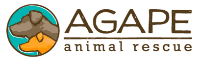 agape animal hospital rescues we work with pet conscious