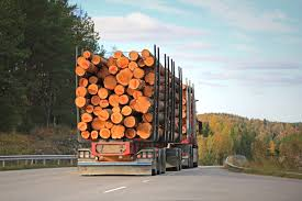 Unsecured Cargo Causing Houston Trucking Accidents | Stewart J. Guss ... What You Should Know About Trucking Accidents Rex Bushman Law Accident Lawyer In Beaverton Or Rayburn Office Georgia Truck Accidents Category Archives Truck Common Causes Of Missouri Trucking And How To Avoid Them Types Negligence Consider Lawsuits Texas Big Wreck Lawyers Explains Company The Differences Between Bus Ernst Michigan 18 Wheeler Semi Tampa Florida Ralph M Guito Iii Is The Average Court Settlement For West Kirkland Wiener Lambka Adrian Murati
