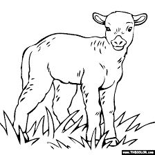 Baby Lamb Coloring Page