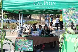 Cal Poly Pumpkin Patch San Luis Obispo by Cal Poly Crops Club Home Facebook