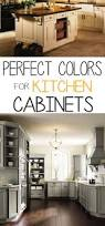 Best Paint Color For Kitchen Cabinets by Best 25 Best Color For Kitchen Ideas On Pinterest Painting
