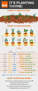 Useful Advice To For Your Advice In Herb Care Plan Your Grown At Home Salads In