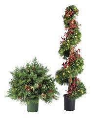 Beacon Hill Outdoor Cypress Topiary Balsam Hill