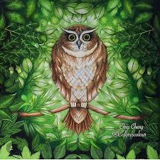 236 Best Enchanted Forest Inspiration Images On Pinterest