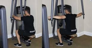 rear pec deck machine pec deck the optimal you personal