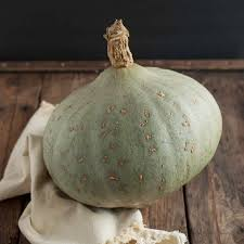 Eden Organic Pumpkin Seeds Where To Buy by Squash Winter Seeds