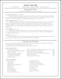 Sample Er Nurse Resume Emergency Room