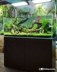 12 Gallon Long Mraqua Setup | Aquarium Inspiration | Pinterest ... Aquascapes Unlimited Best Of Amazon Com Aquascape Micropond Kit 6 Amazoncom 58066 Stainless Steel Terwall Spillway Unique Opsixmailcom 3932 Best Images On Pinterest Aquascaping Aquariums 98948 Dry Beneficial Bacteria For Pond And Aquarilandschaften Gestalten Amazoncouk Oliver Rock Scape Aquascapez Aquarium Rocks Tutorial Natures Chaos By James Findley The Making Introduction To Red Cherry Shrimp