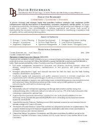Example Of Resume Summary Luxury Fice Manager Resume Sample