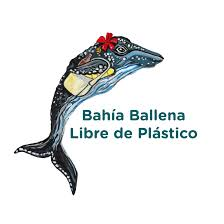 Disposable Plastic Bathtub Liners by Life Without Plastic L Your One Stop Shop For Plastic Free Products