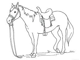 Horse Head Coloring Page This Is Pages Horses Images Printable