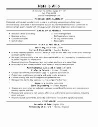 Resume Examples For Gaps In Employment Lovely 19 Project Coordinator Summary