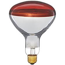 Philips Lamps Cross Reference by Philips 145516 175 Watt Par38 Clear Heat Lamp Light Bulb