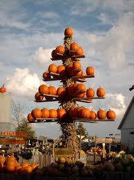 Pumpkin Patch Illinois 2016 by Illinois Marketmaker The Great Pumpkin Patch