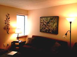 Apartment Bedroom Decorating Ideas On A Budget Beautiful Home College Decor Best Design Uspact Apartments Medium
