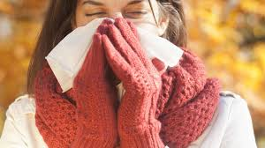 Best Christmas Tree Type For Allergies by Allergies Weather Com