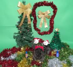 Kim Wilde Rockin Around The Christmas Tree by Neil Moodie Neil Moodie