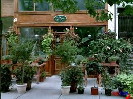 Christmas Tree Shop Somerville Ma by Shop Boston U0027s Best Blooms At These 13 Standout Florists