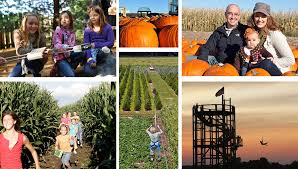 100 Highwood Pumpkin Fest Hours Halloween In Chicago Choose by Your Guide To Fall Fun In Lake County