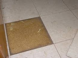 Vinyl Tile On Particleboard The Floor Pro Community Inside Sizing 1024 X 768